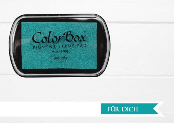 Pigment Stempelkissen Turquoise XL